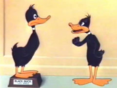 Daffy Duck - Cracked Quack