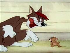 Tom & Jerry - Sufferin' Cats!